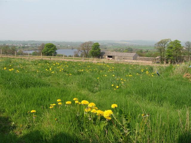 Royd Moor Reservoir - geograph.org.uk - 166886