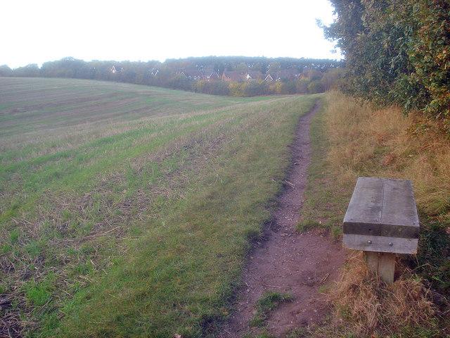 Seat near Gunthorpe Hagg Wood - geograph.org.uk - 1561079