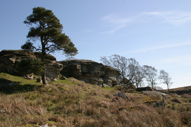 Shaftoe Crags - geograph.org.uk - 387833