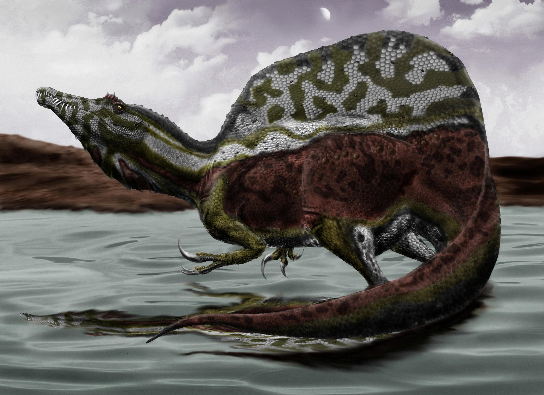 Spinosaurus_durbed.jpg