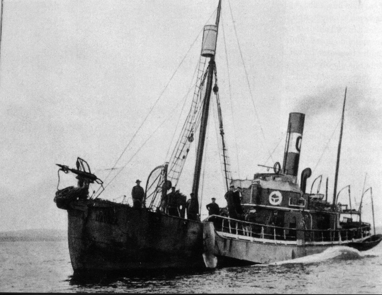 Whaler Wikipedia