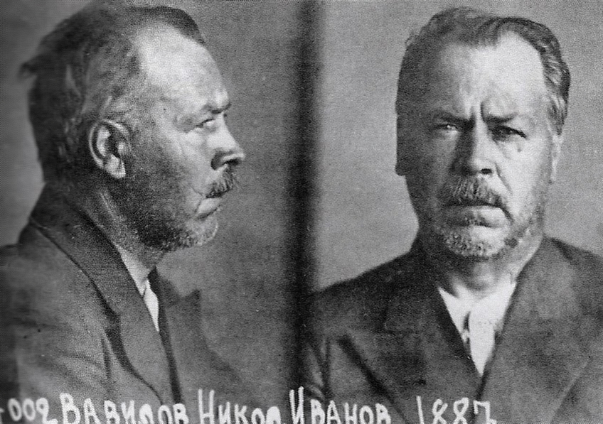 File:Vavilov in prison.jpg