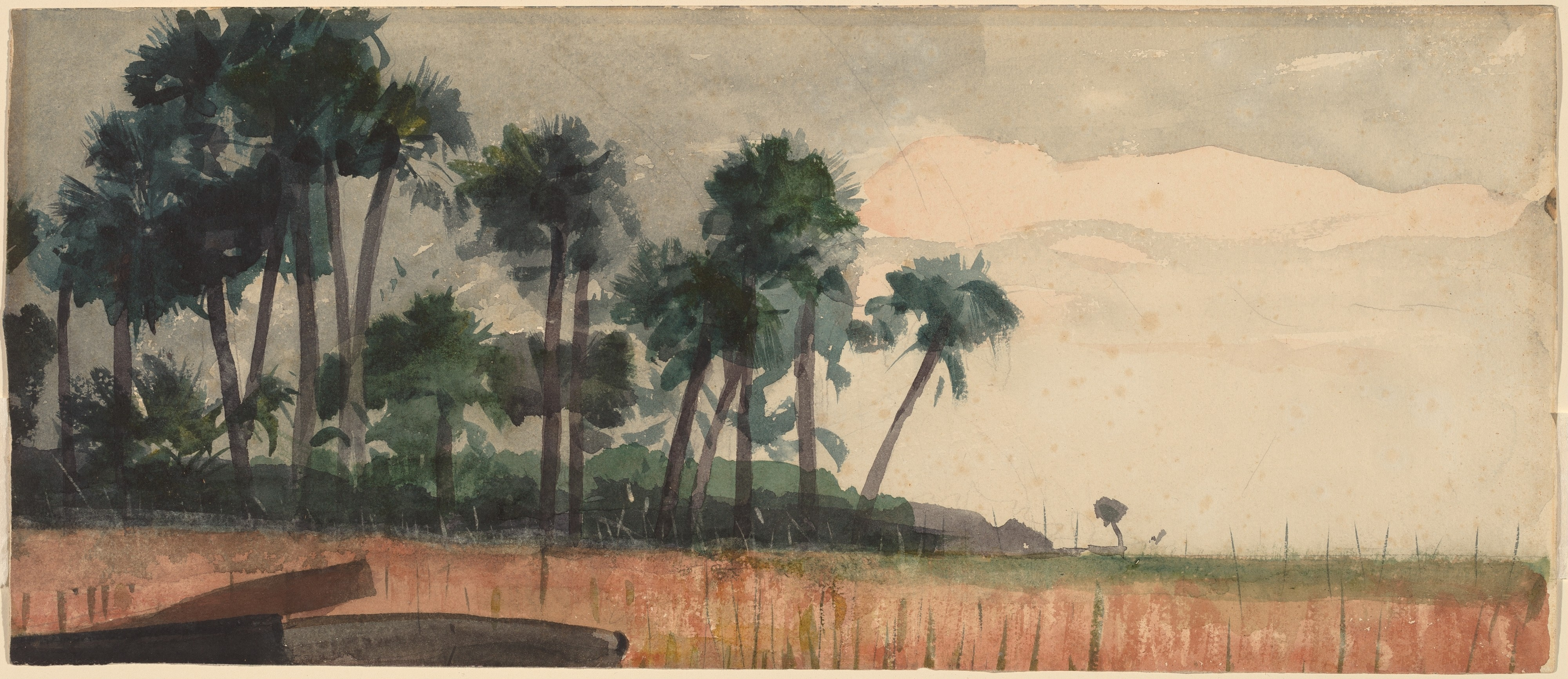 File Winslow Homer Palm Trees Red Jpg Wikimedia Commons