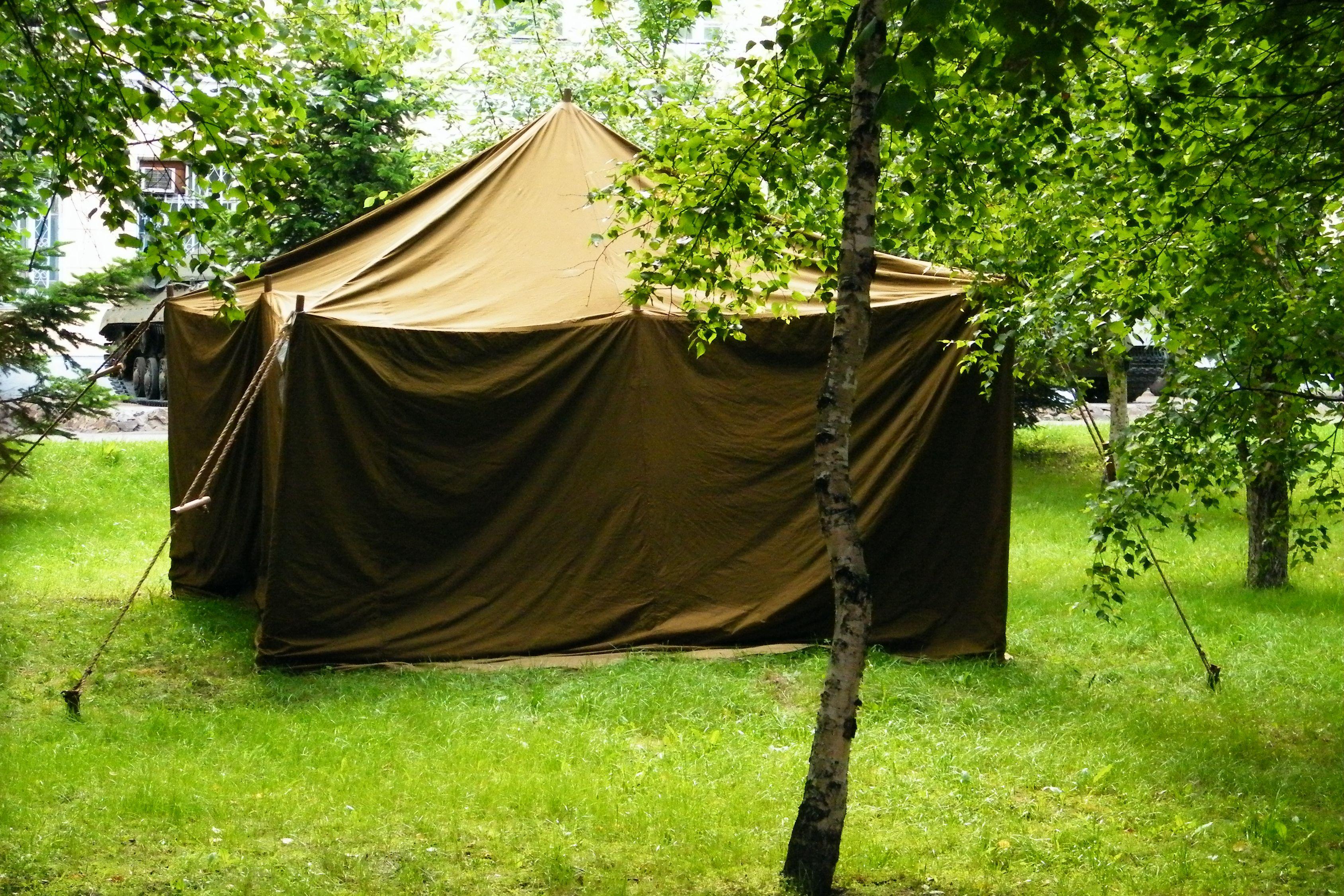русскую имеют в палатке