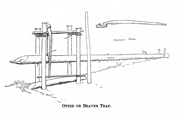 snares and traps instructions