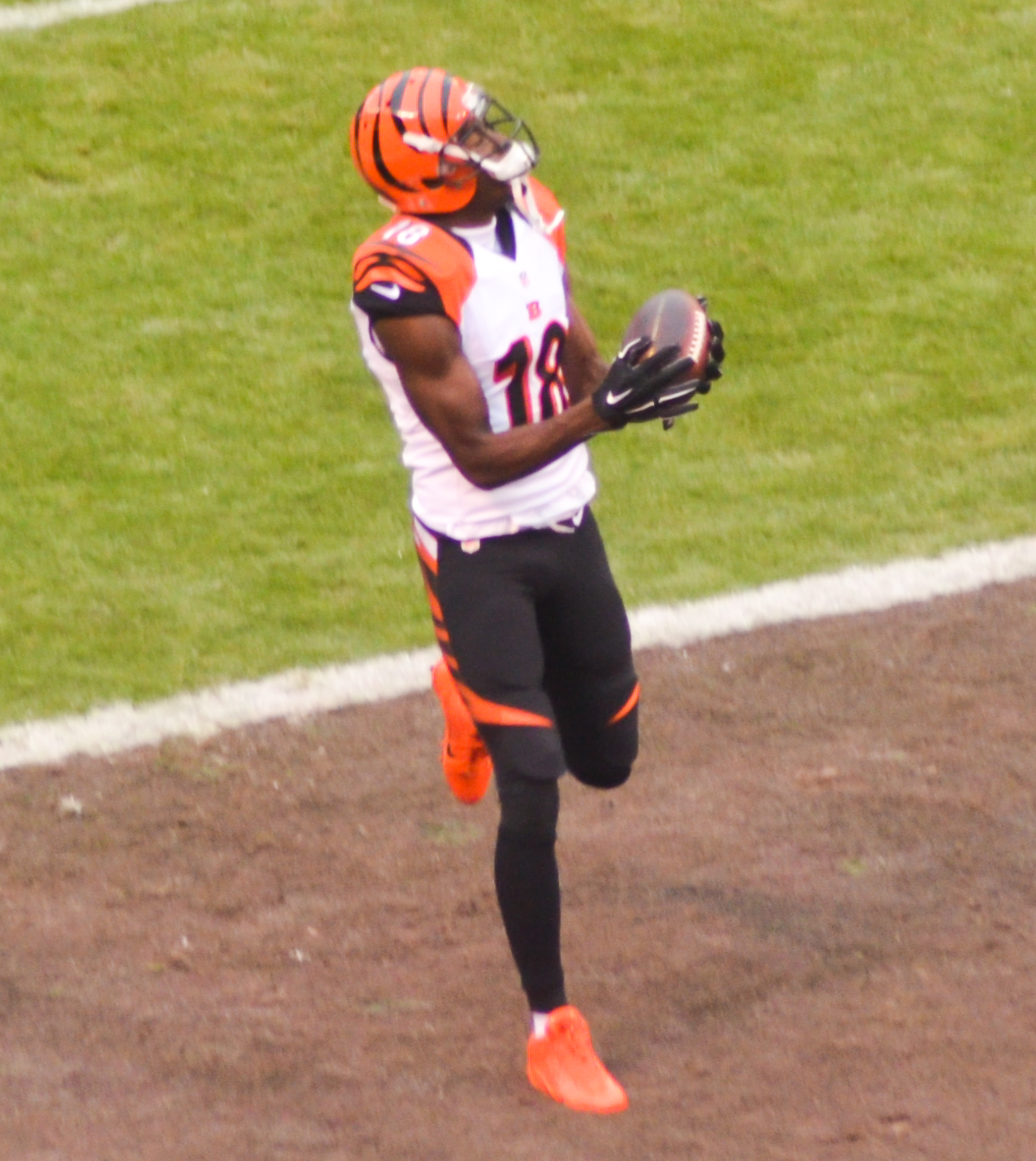 File A.J. Green vs. Browns 2014.jpg - Wikimedia Commons ca75e7da2