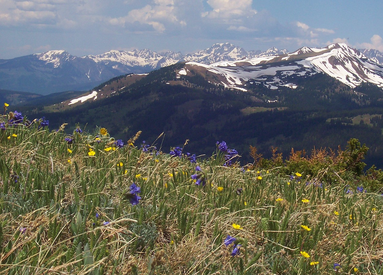 a description of the colorado mountains Colorado life zones: elevation and climate the lower elevations of colorado like the if you start feeling this way when you are up in the mountains.