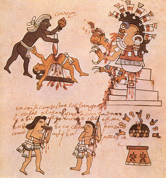16th century illustration of Aztec sacrificial bloodletting – Bloodletting