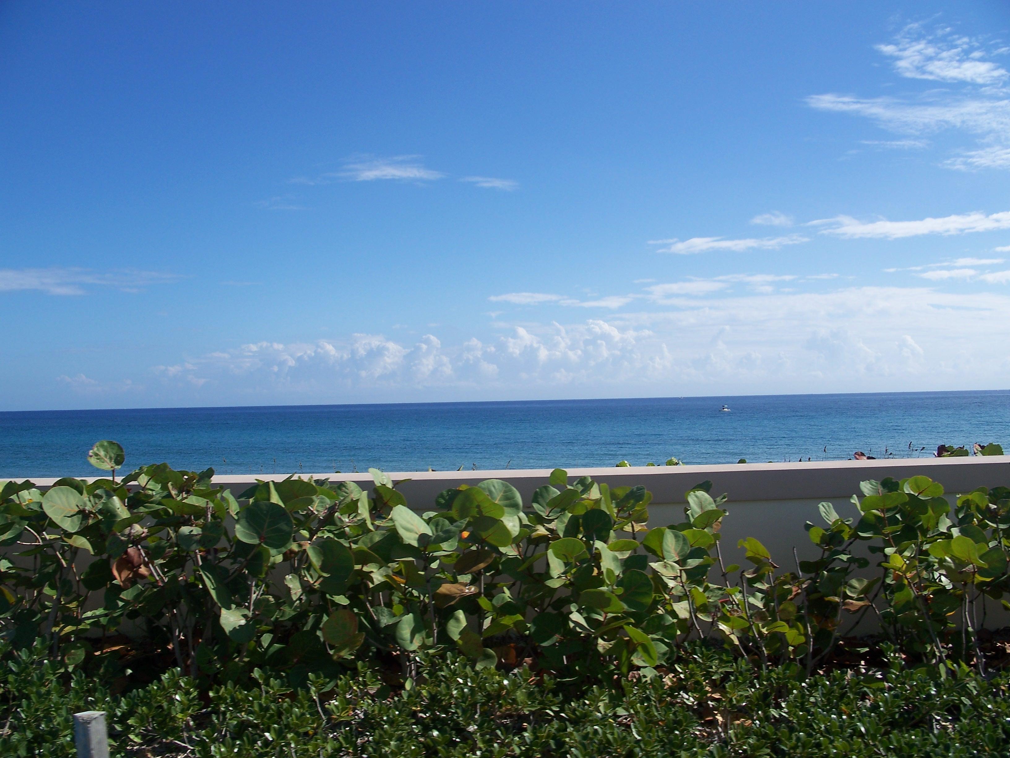 Dating I Boynton Beach Florida