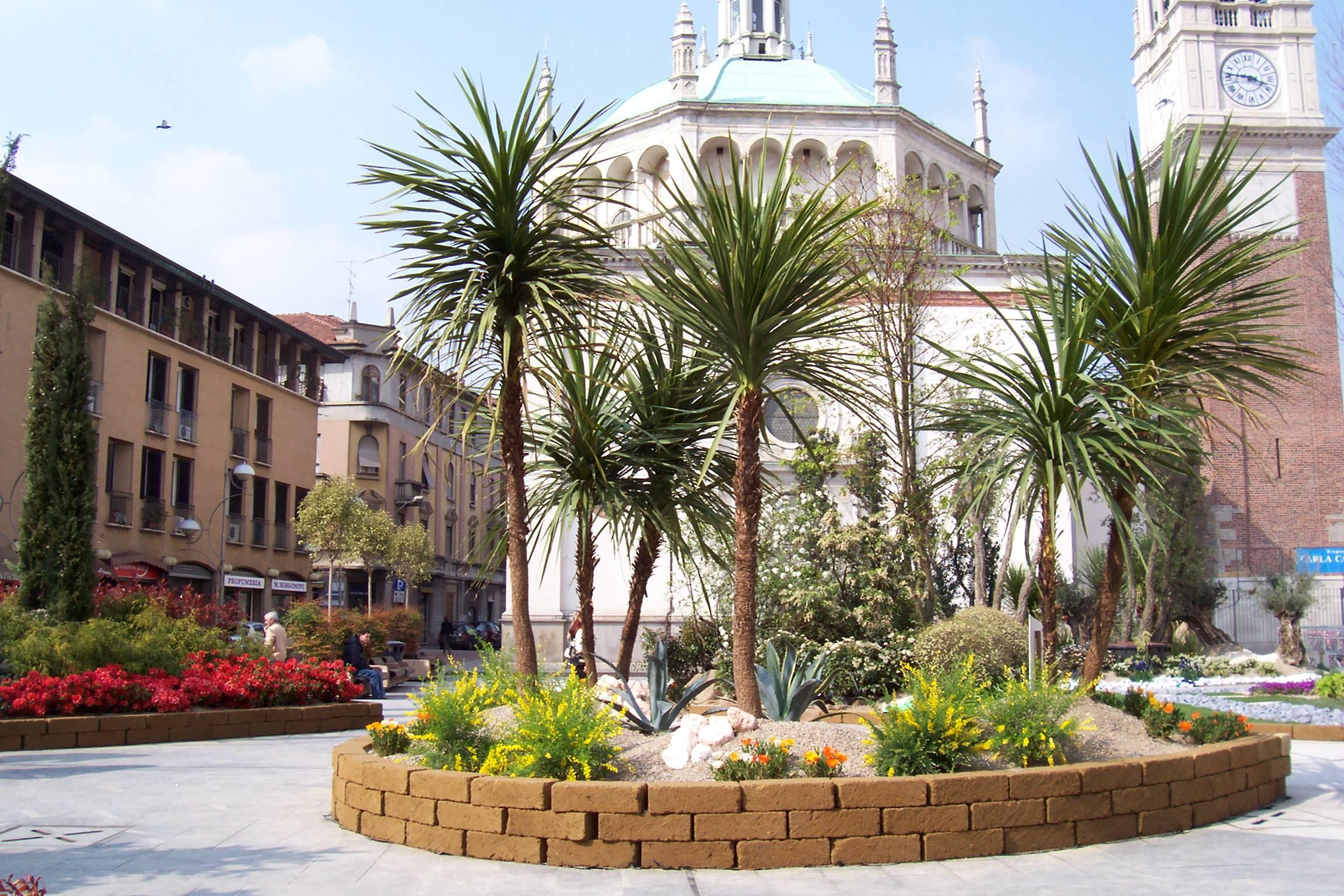 File busto arsizio fiori e piante in piazza santa wikipedia - Piscina busto arsizio ...