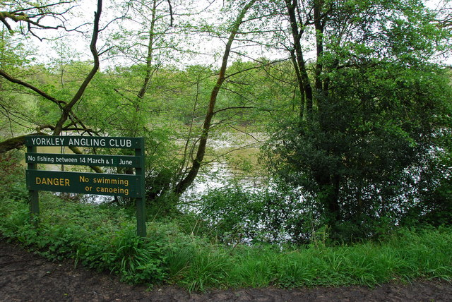 Cannop Ponds - geograph.org.uk - 1319166