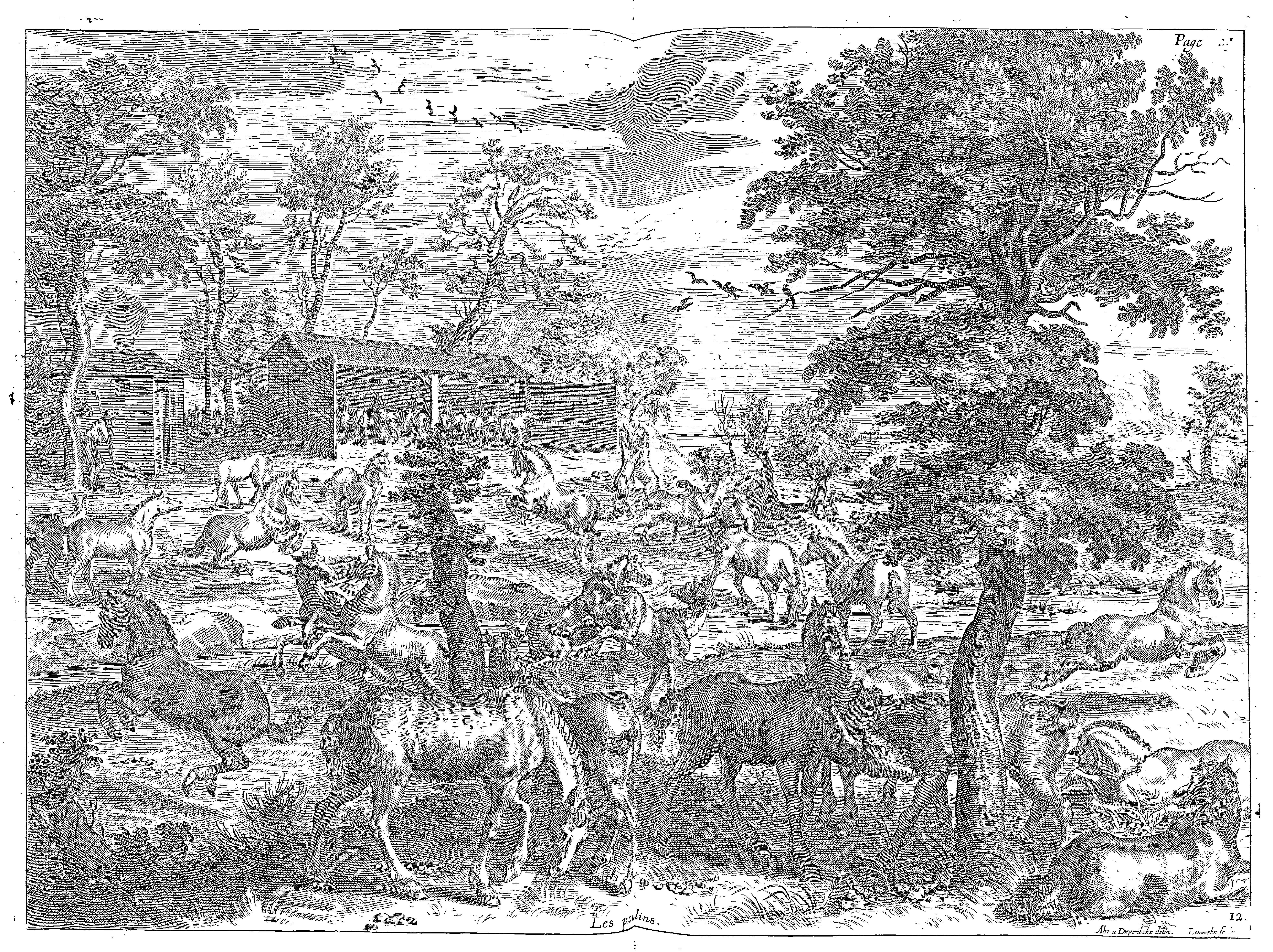 Filecavendish Lart De Dresser Les Chevaux 1737 Page054