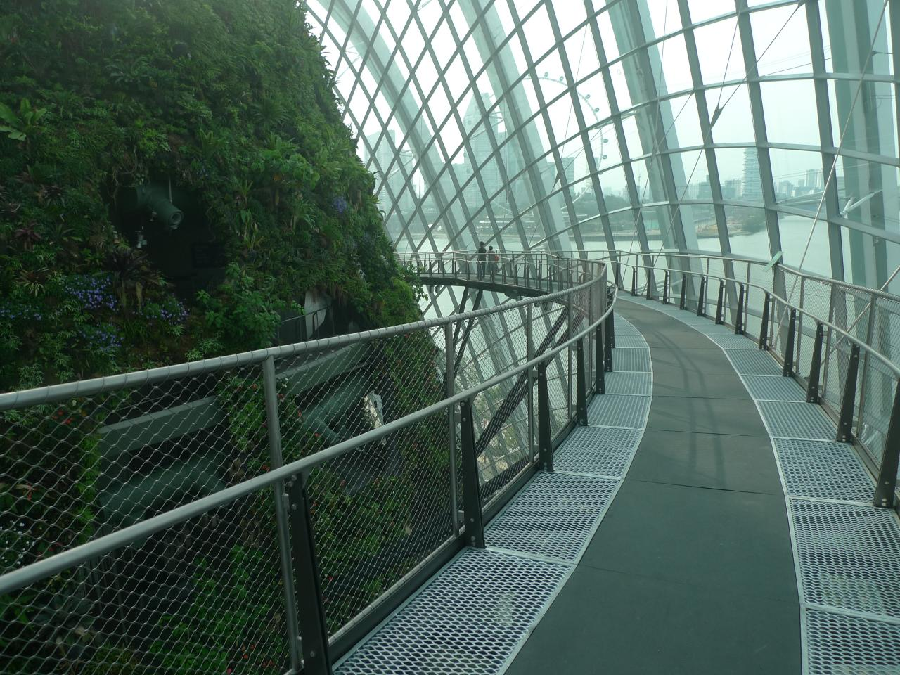 Garden By The Bay Cloud Forest