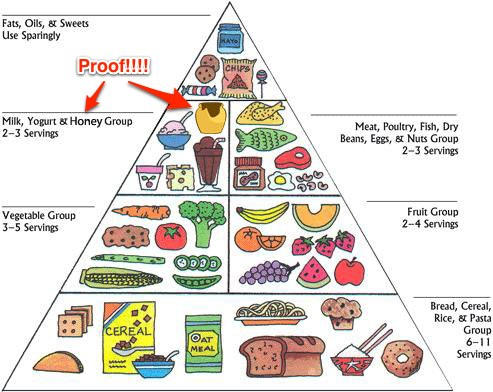 Image result for no dairy products