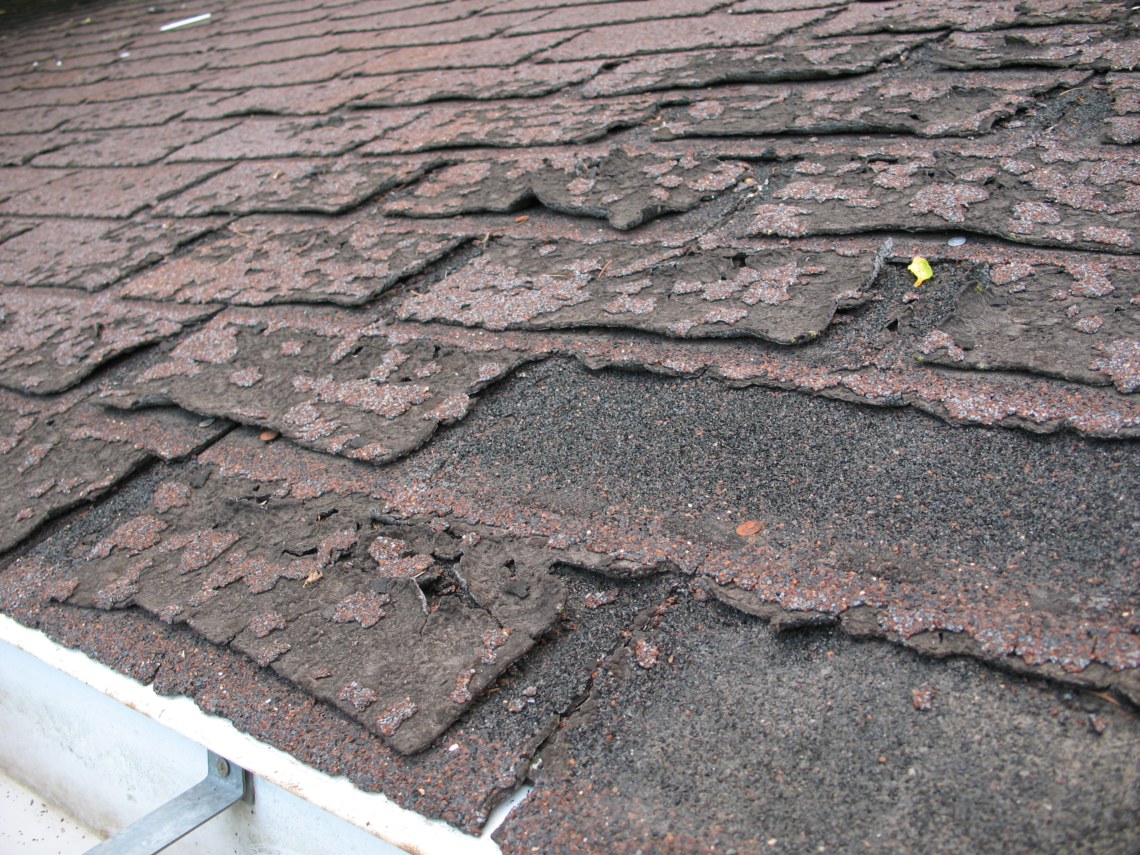 Roofing Felt Paper File:Failure of asphalt shingles allowing roof leakage.JPG ...