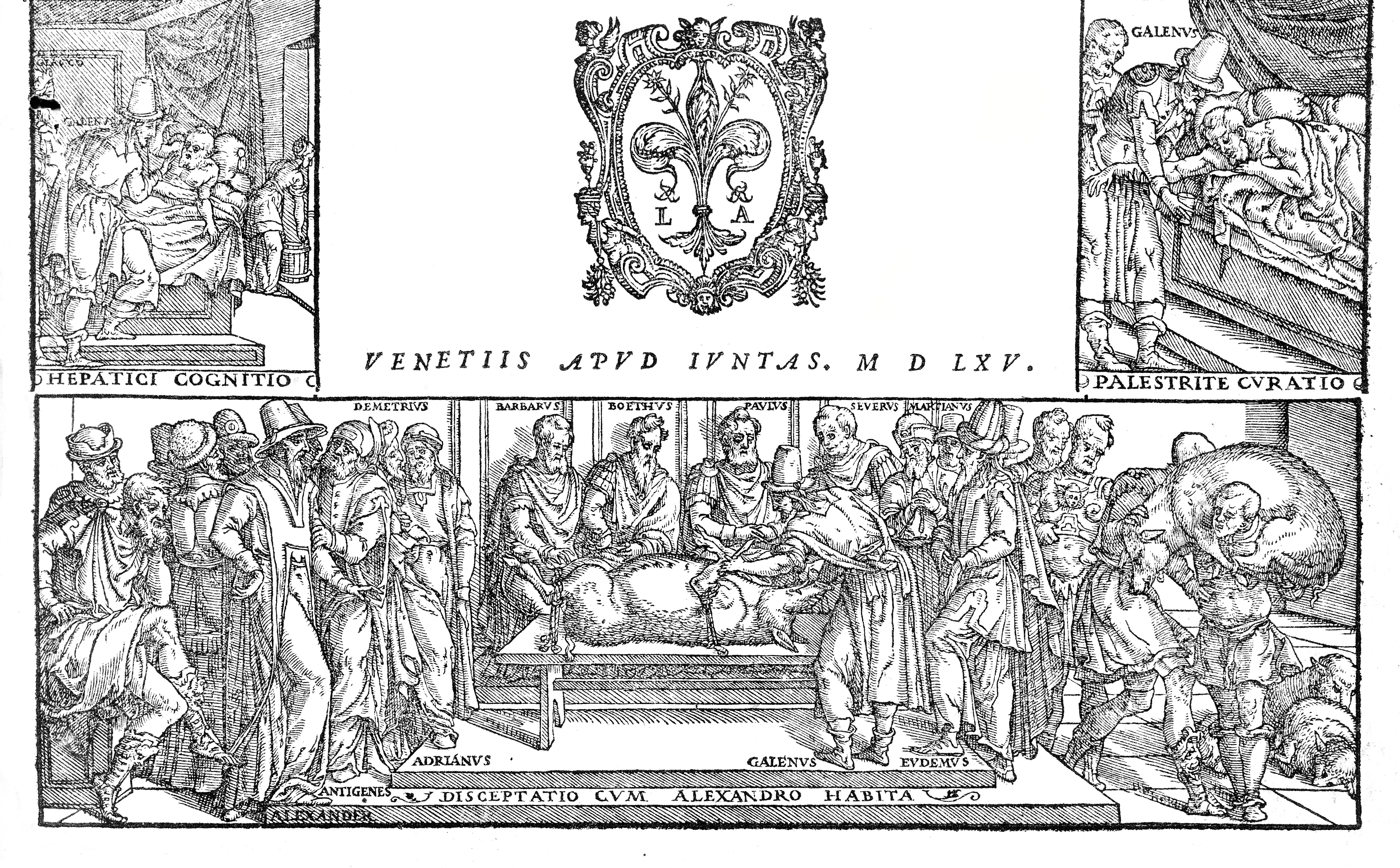 File:Galen, Opera omnia, dissection of a pig. Wellcome L0020565.jpg ...