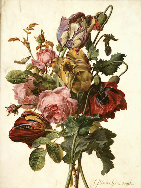 Famous Botanical Paintings