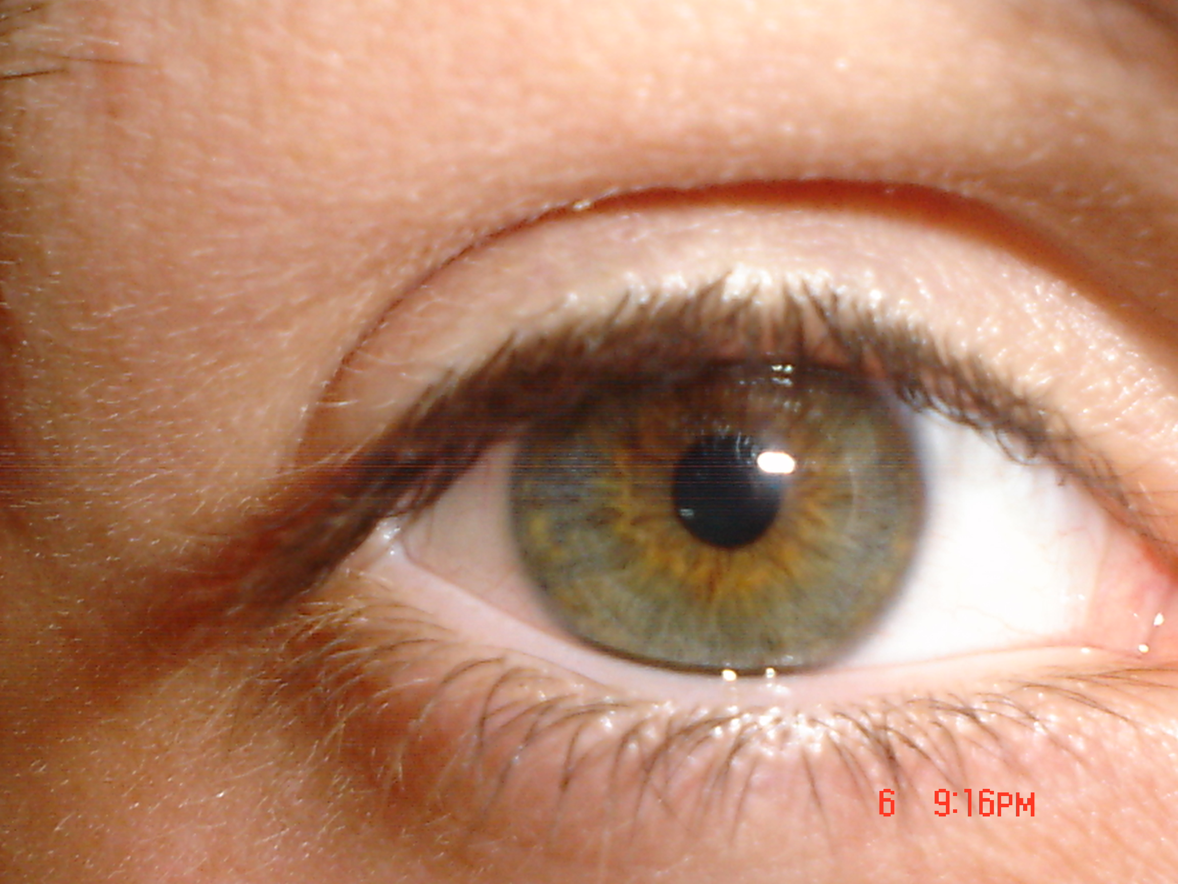 Green Eyes And European Phenotypes