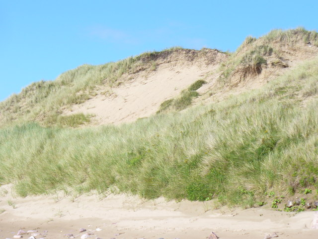 Hillend Burrows - geograph.org.uk - 1419969