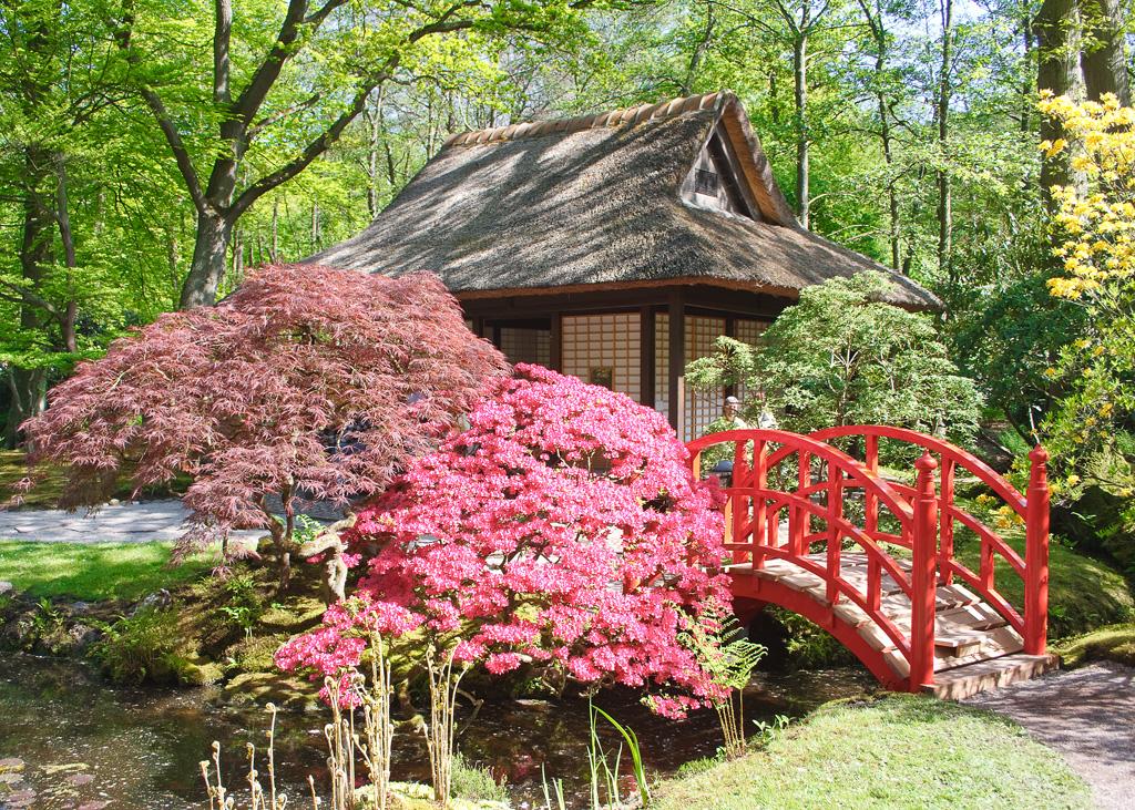 bestand jardin japonais dans le park de wikipedia. Black Bedroom Furniture Sets. Home Design Ideas