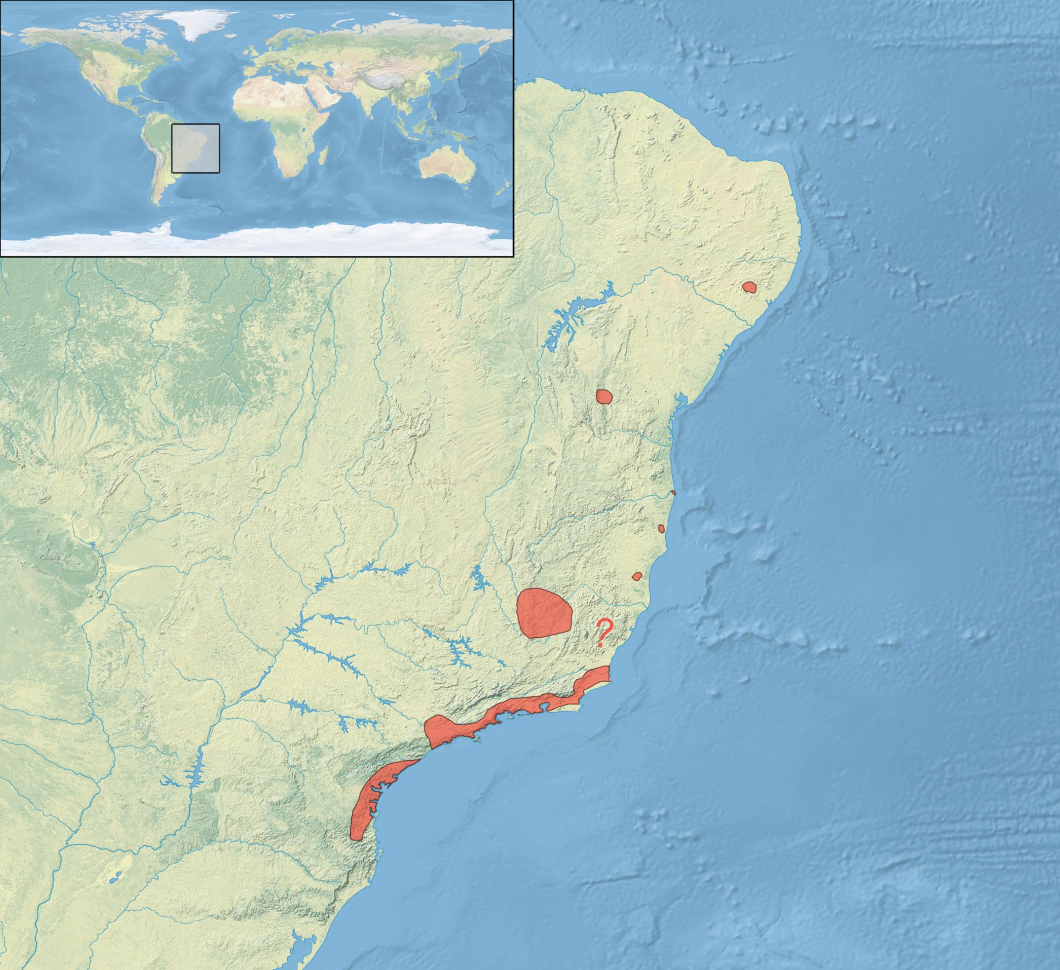 [Image: Leucopternis_lacernulata_distribution_map.png]