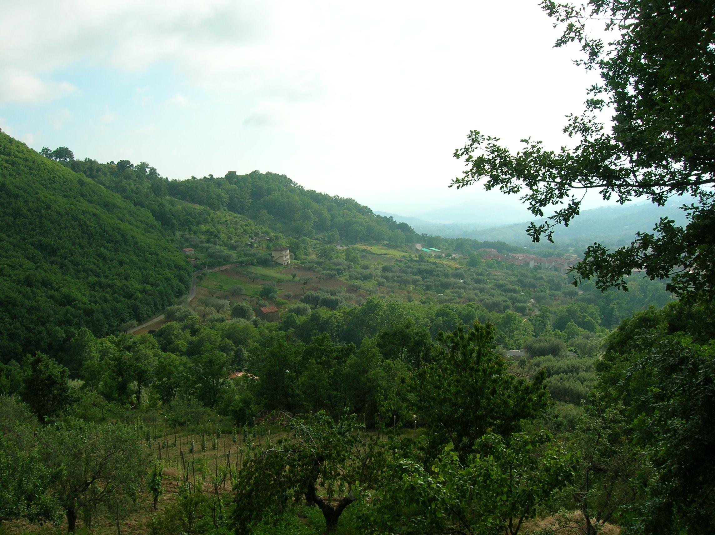 Cilenton ja Vallo di Dianon kansallispuisto