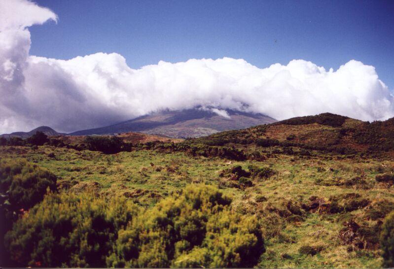 ピコ島の画像 p1_14