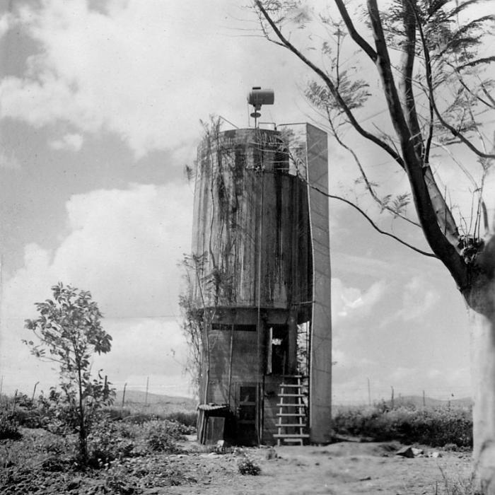 סולם מגדל המים המוסווה בטירת צבי