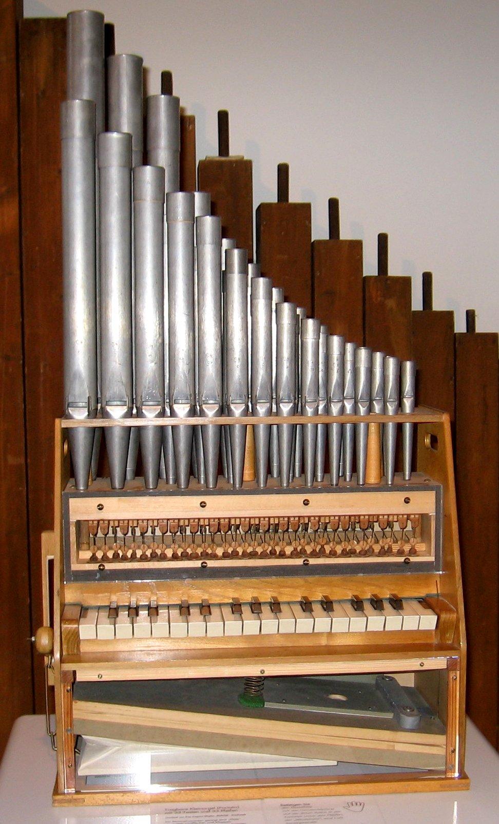 Resultado de imagen de órgano