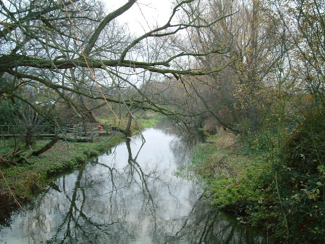 River Colne - geograph.org.uk - 88631