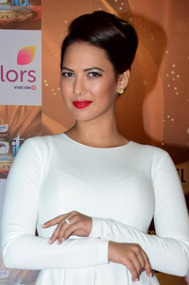 Rochelle Rao graces The Indian Television Academy Awards 2017 (18) (cropped).jpg