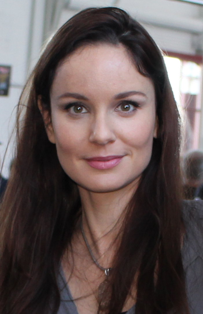 Sarah Wayne Callies earned a  million dollar salary, leaving the net worth at 8 million in 2017