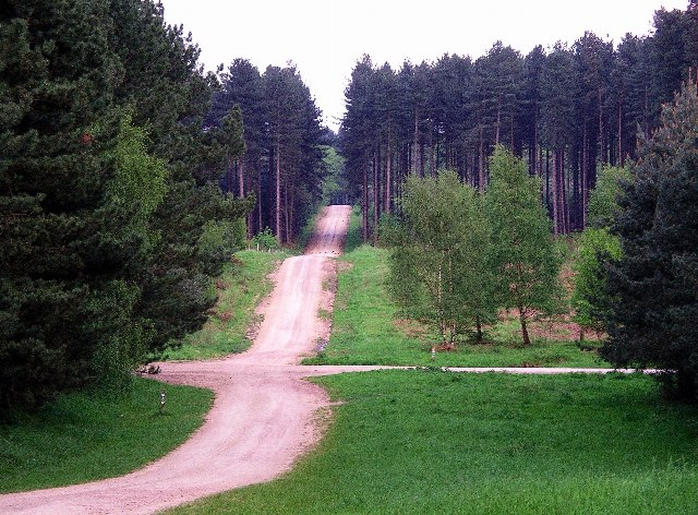 Sherwood Pines Forest Park. Sherwood Pines Forest Park, near the better known Sherwood Forest, is a working forest that caters well for the visitor, with extensive footpaths, cycle trails and bridleways, and the chance to spot one of the wild deer which roam the forest.