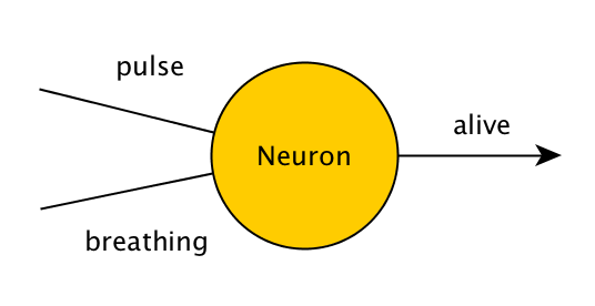 Single neuron which takes the values of pulse (true/false) and breathing (true/false), and outputs value of alive (true/false).