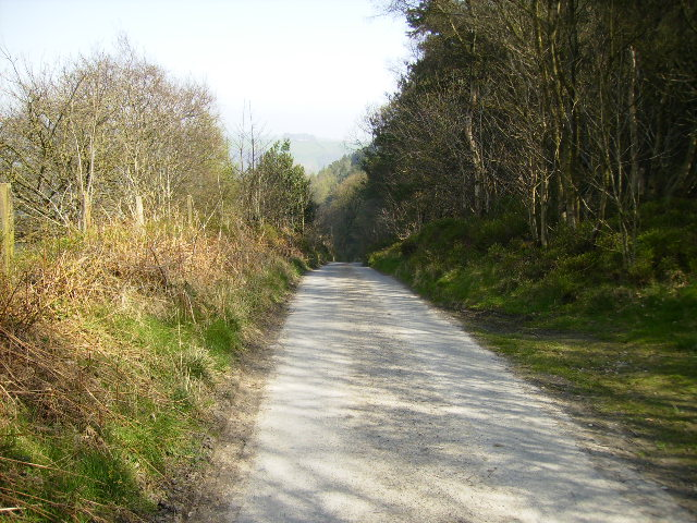 Steep hill on the white road from Wrench Green to Wykeham Forest - geograph.org.uk - 400516