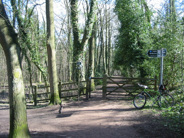 Tracks and signpost in Ecclesall Woods - geograph.org.uk - 373071