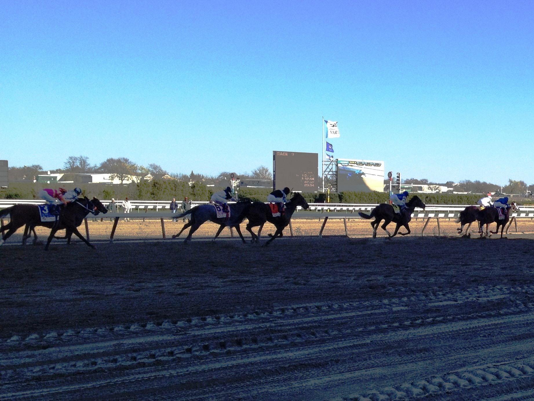 Anita park is Metro Turf Horse Racing Program worldwide sport and