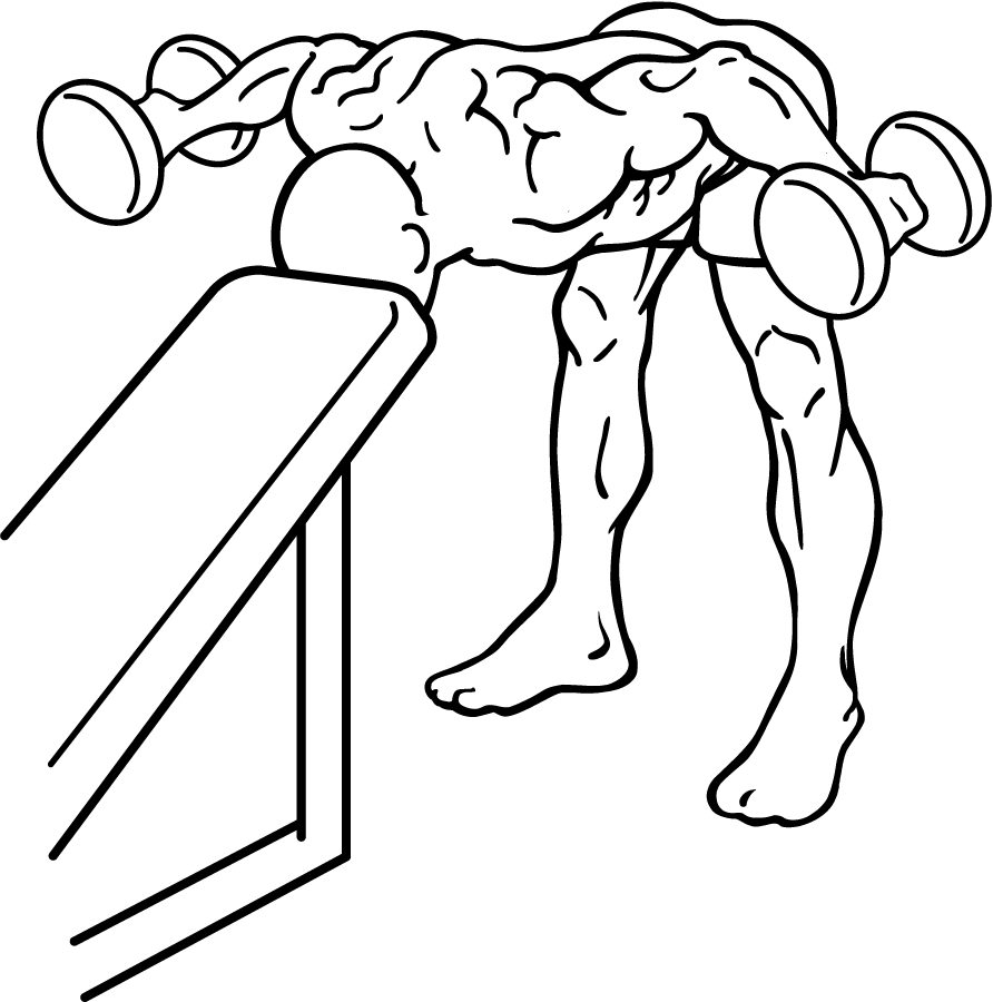 File Bent Over Rear Delt Row With Head On Bench 1 Png