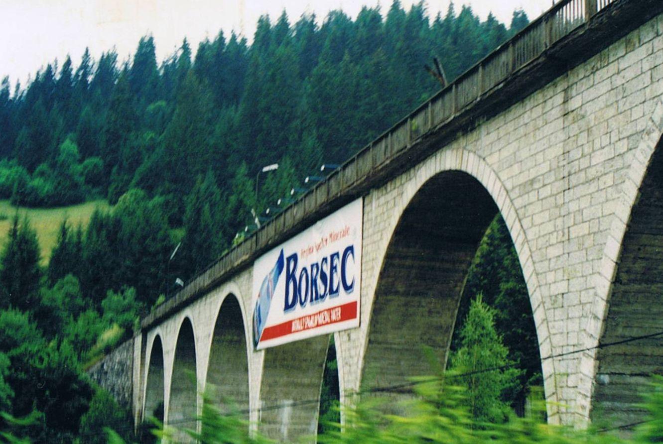 Image result for borsec