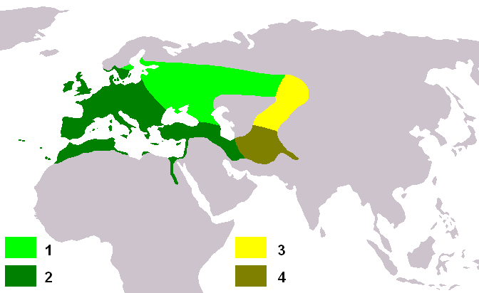 Carduelis carduelis distribution map