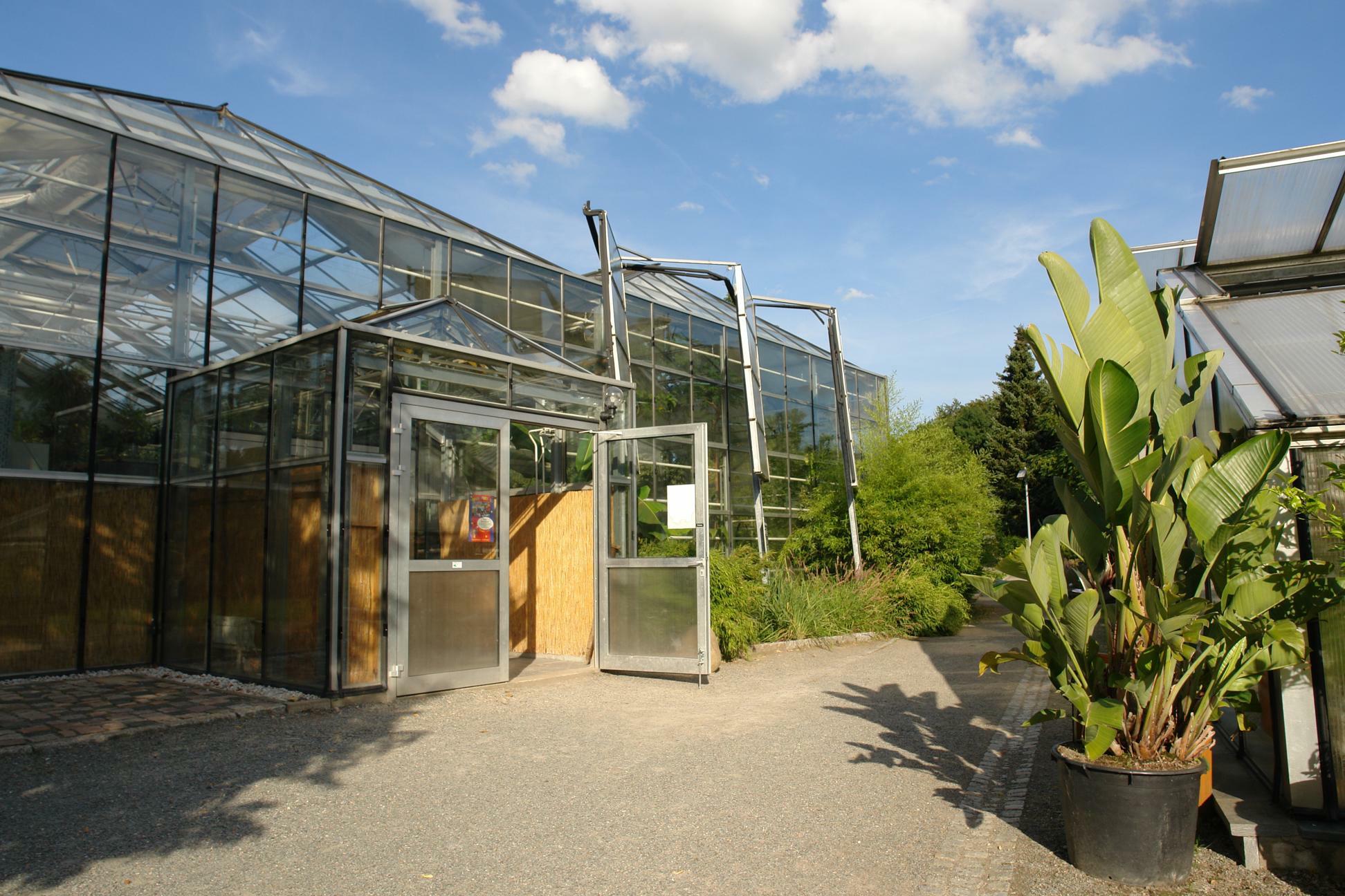 Botanischer Garten Chemnitz Wikipedia