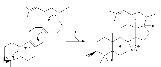Resim:Cholesterol-Synthesis-Reaction12.png