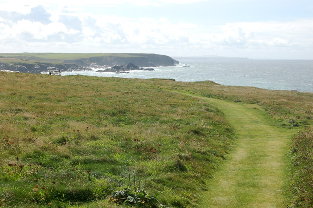 Coastpath south of Treyarnon (4) - geograph.org.uk - 1473712