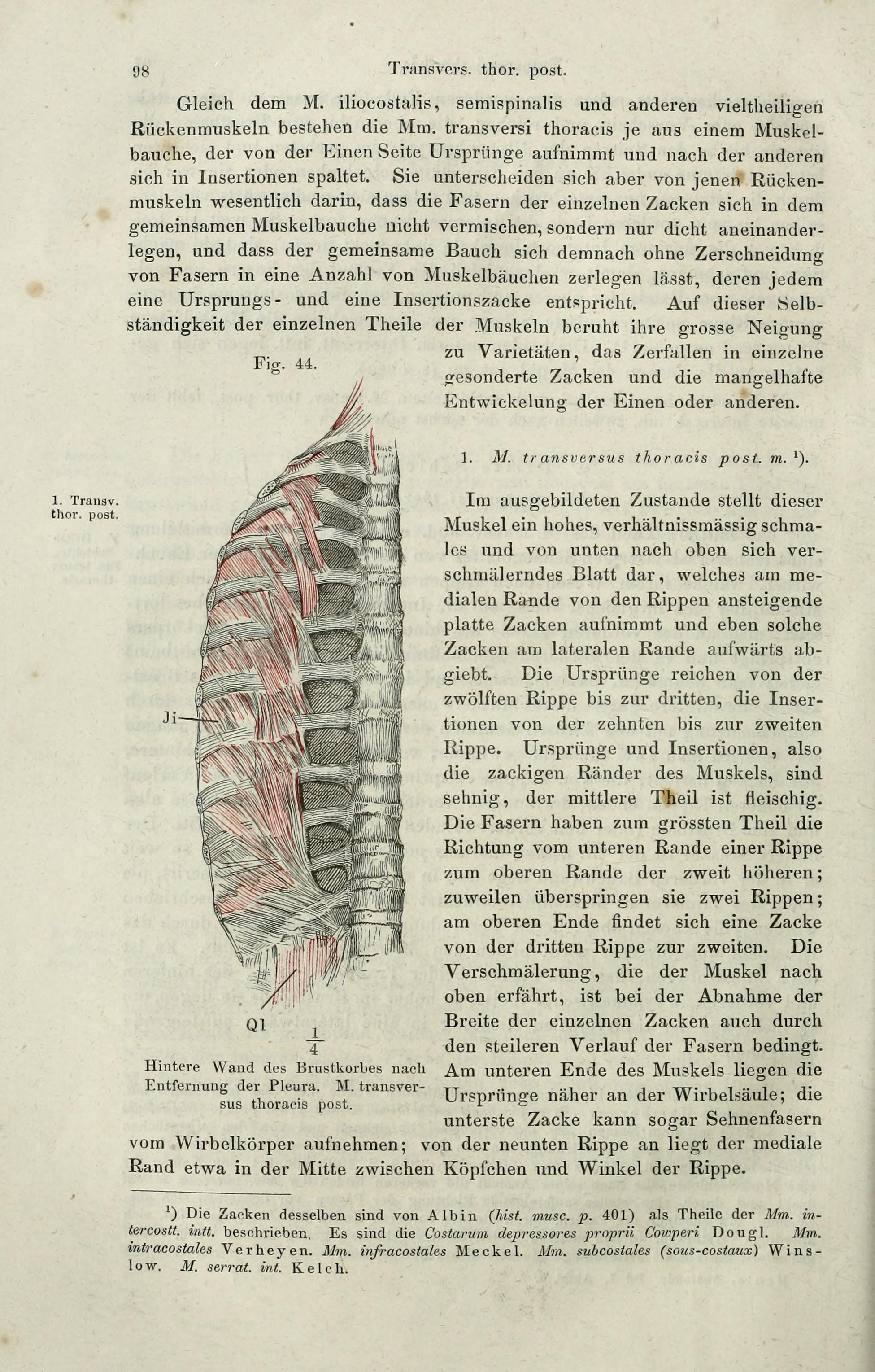 Wunderbar Die Anatomie Der Melancholie Zusammenfassung Ideen ...