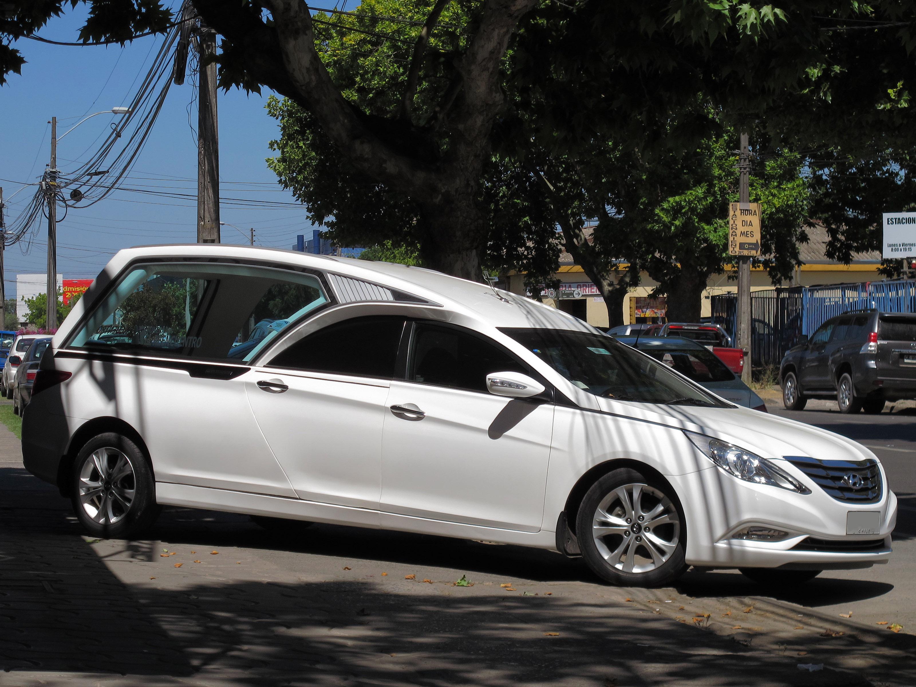 File Hyundai Sonata 2 0 Gls He 2010 15639257543 Jpg