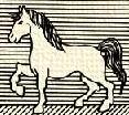 Ló (álló).PNG