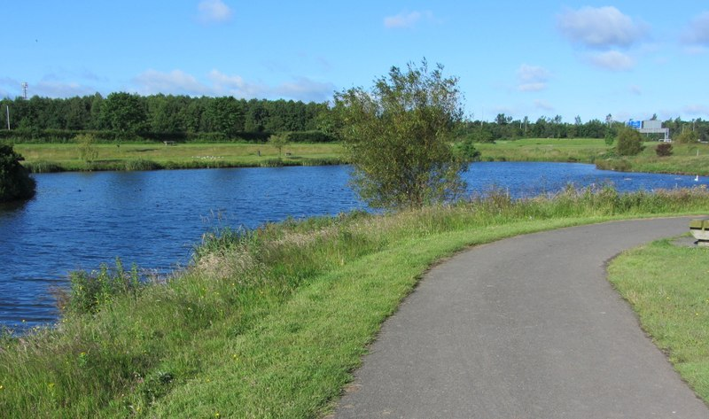 Lake on the Poddle in Tymon Park (E), M50 in background (geograph 3545710)