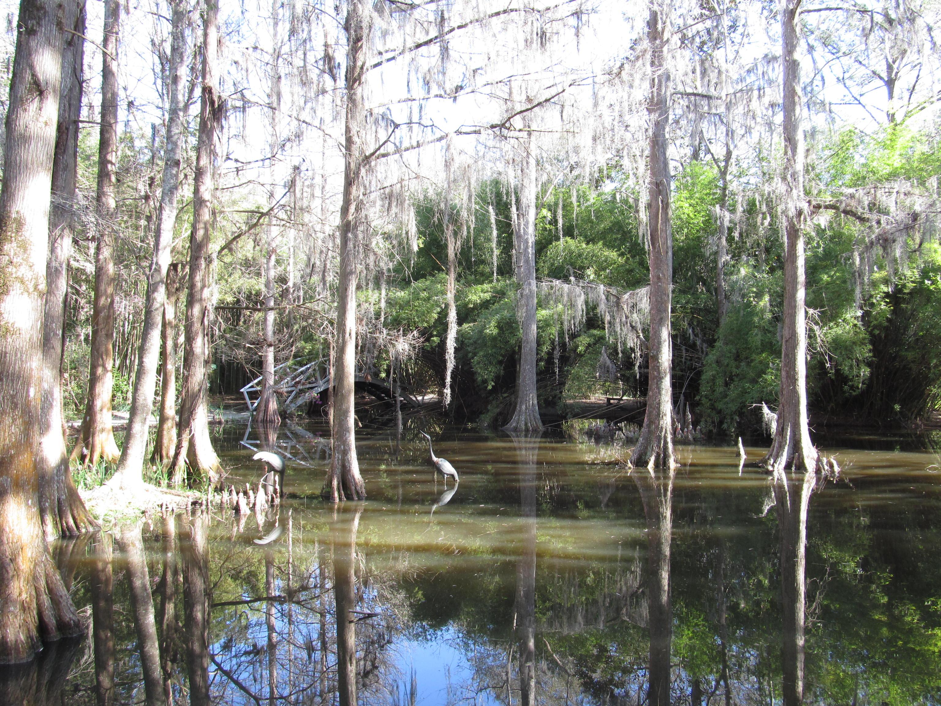 File Magnolia Plantation And Gardens Charleston South Carolina 8555468175 Jpg Wikimedia