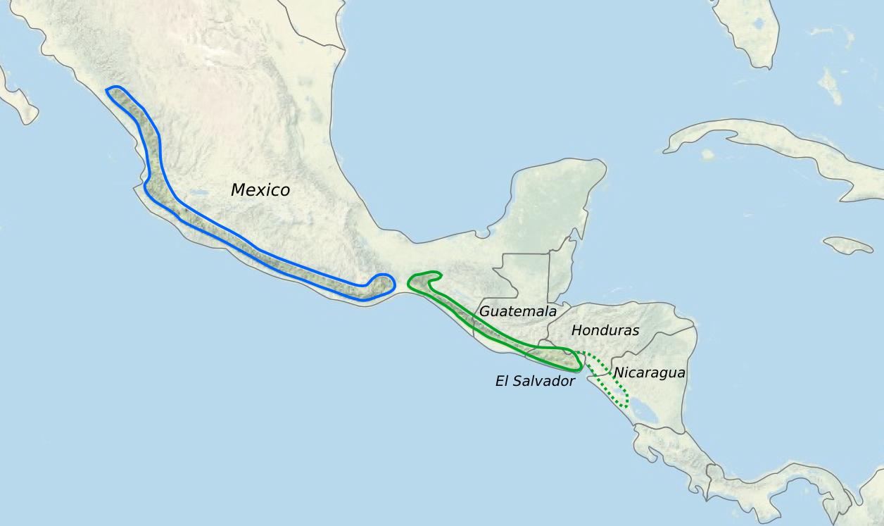 Meiracyllium - range map