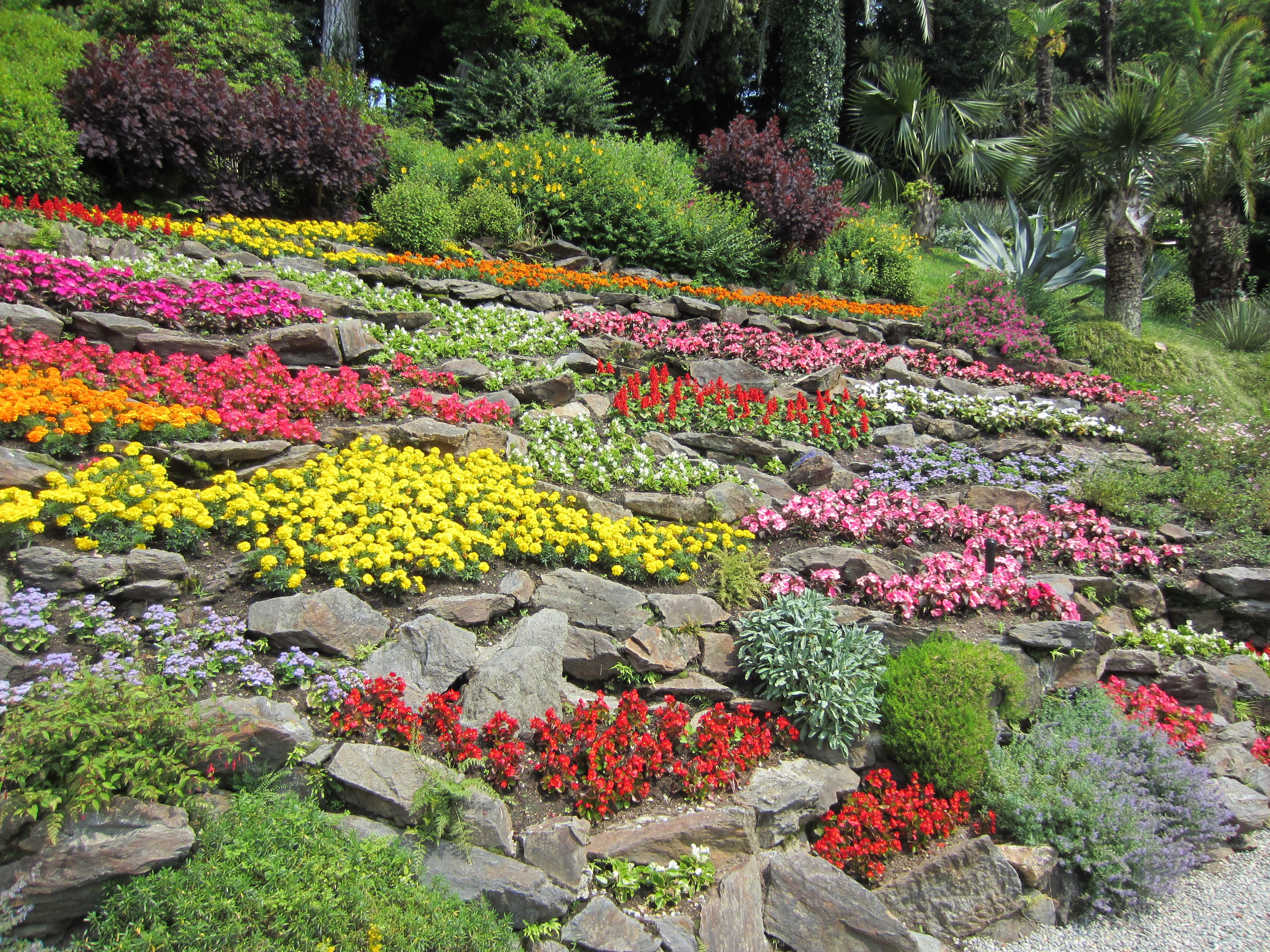 File parco di villa carlotta fiorito jpg wikimedia commons - Foto di giardini fioriti ...